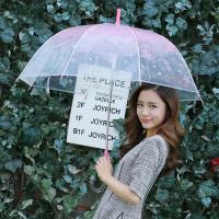 Wholesale South Korea cherry transparent long handle umbrella , creative umbrella, automatic lovers from china suppliers