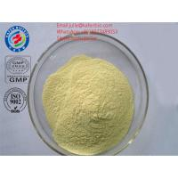 Wholesale Sell Top Quality Pharmaceutical Raw Materials TP(Tea polyphenol) Powder CAS: 84650-60-2 from china suppliers