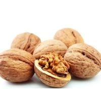 Wholesale Clearance Agent Import Nuts into the China from china suppliers