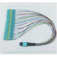 Wholesale 24 Cores Fanout Mpo To 24 Lc Optical Patch Cord , Mpo Patch Cord Fiber Optic from china suppliers