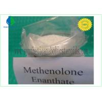 Wholesale CAS 303-42-4 Nandrolone Steroid , Methenolone Enanthate Powder Lean Muscle Steroids from china suppliers
