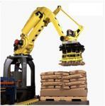 Wholesale LLQ-R120 automatic palletizing manipulator from china suppliers