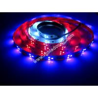 Wholesale 2811 digital rgb 3led pixel strip from china suppliers