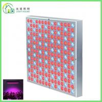 Wholesale Red LED Indoor Garden Lights / Energy Efficient LED Flowering Grow Lights , AC 85~265V from china suppliers