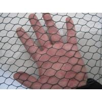 Wholesale 48 Inch x 50 Feet  3/4 Inch Vinyl Coated Chicken Wire Mesh Fence , Woven Wire Fabric from china suppliers