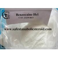 Wholesale Local Anesthetic Drugs Benzocaine Hcl Pain Reliever Benzocaine Hydrochloride CAS 23239-88-5 from china suppliers