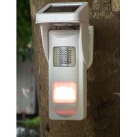 Quality Outdoor Independent Voice  Alarm Motion Detectors With Solar Power for sale