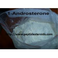 Wholesale Pure DHEA Hormone Supplement 1-DHEA / 1 - Androsterone  Prohormone CAS 76822-24-7 from china suppliers