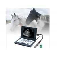 Wholesale CLS5800 laptop Veterinary Ultrasound Scanner Full Digital Ultrasonic Diagnostic System from china suppliers
