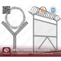 Hot Dipped Galvanized razor wire coil
