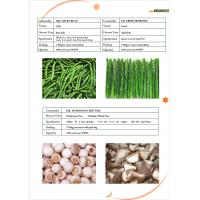 Wholesale frozen basil from china suppliers