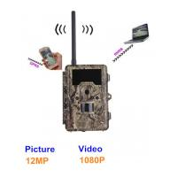 Buy cheap Outside Wild Game Infrared Trail Hunting Camera , CE / ROHS / FCC Approvals from wholesalers