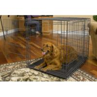 "Wholesale Folding dog cage 48""x30""32"" from china suppliers"