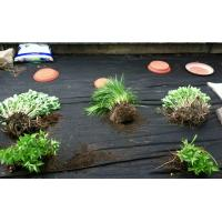 Weed control landscape fabric images buy weed control landscape fabric Vegetable garden weed control