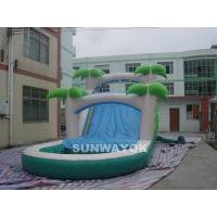 Wholesale Custom  Water Park Inflatable Water Slide With Pool For Children / Adults from china suppliers