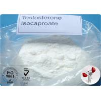 Quality Bodybuilding Raw Testosterone Powder Testosterone Isocaproate CAS 15-37-7 for sale