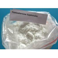 Wholesale Raw Hormone white Powder CAS No.:58-20-8 Testosterone Cypionate  for Testosterone Cypionate Injection and Pill from china suppliers