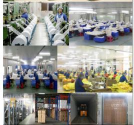 Shandong Qibang Resin Co., Ltd
