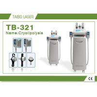 Wholesale Cryolipolysis Weight Loss Freeze Fat Machine / Coolshaping RF Cavitation Equipment from china suppliers
