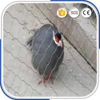 Buy cheap Small bird 1.2 mm with 30 mm mesh eye size stainless steel wire rope aviary netting from wholesalers