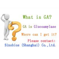 Wholesale Glucoamylase Enzymes Used In Food Processing 290,000u/g Szym-GA290FO from china suppliers