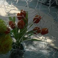 Wholesale Dual-sided Acid Etched Pattern Glass from china suppliers