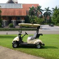 Wholesale Electric Power 2 Seater Golf Carts , Small 2 Passenger Golf Buggy UV Proof from china suppliers