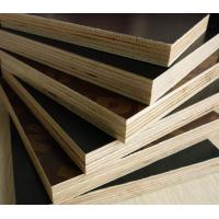 18mm construction grade film faced plywood shuttering. Black Bedroom Furniture Sets. Home Design Ideas