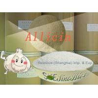 Wholesale White Feeding Garlicin Powder Purity 30% Min. SBC-ALL30 Little sulfide Content from china suppliers