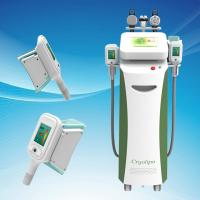 Wholesale Cryolipolysis Fat Reduction/Cryolipolysis Fat Burning from china suppliers