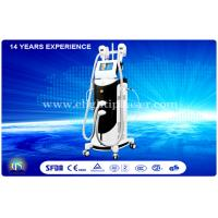 Wholesale Female Vertical Cryolipolysis Equipment , Professional Weight Reduction Machine from china suppliers