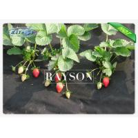 Wholesale Biodegradable Spunbond Non Woven Landscape Fabric For Anti - Grass from china suppliers