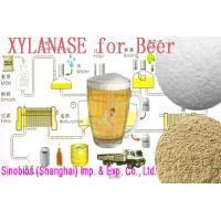 Wholesale Healthy Food Additives Trichoderma Reesei Light Yellow Xylanase Powder Szym-XY100BE(TR) from china suppliers