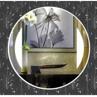 Wholesale Silver mirror glass mirror hotel mirror from china suppliers