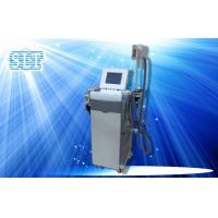 Wholesale Ultrasonic Cavitation RF Cryolipolysis Slimming Machine , Lipo Laser Fat Removal Equipment from china suppliers