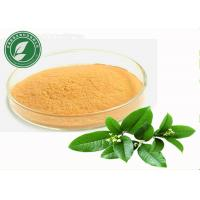 Wholesale Natural Plant Extract Tea Polyphenol For Anti Cancer CAS 84650-60-2 from china suppliers