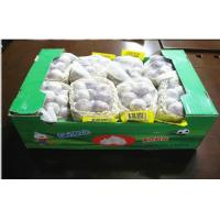 Wholesale 5.0cm Organic Fresh Garlic Pure White Contains Vit. B1 B2 B3 For Restaurant, Anti-fatigue effect from china suppliers