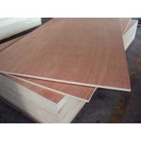 Wholesale commercial plywood from china suppliers