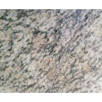Quality Tiger Skin Rusty Granite Tile for Flooring (LY-319) for sale