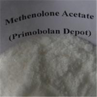 Wholesale Healthy Oral Primobolan Methenolone Acetate Steroids Bodybuilding Bulking Cycle  For Women from china suppliers