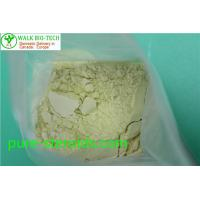 Wholesale Effective Bodybuilding White Trenbolone Powder Trenbolone Base CAS 10161 - 33 - 8 from china suppliers