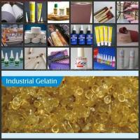 Wholesale Pearl Bone Glue from china suppliers