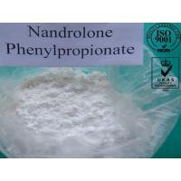 Wholesale Pharmaceutical Nandrolone Phenylpropionate Steroid Powder CAS NO. 62-90-8 from china suppliers