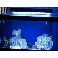 Wholesale Aquarium LED Light for Fish Tank, Coral, Reef (Apollo 20) from china suppliers