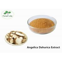 Wholesale Radix Angelicae Extract Powder Relieve Pain / Herbal Medicine Plant Based Powder from china suppliers