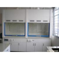 Wholesale pp ventilation cabinet  PP lab cabinet    PP lab furniture and fume hood from china suppliers