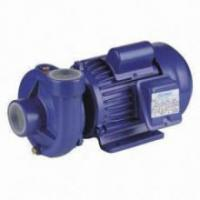 Wholesale Single Impeller Agricultural Water Pump 0.75HP For Household Watering from china suppliers