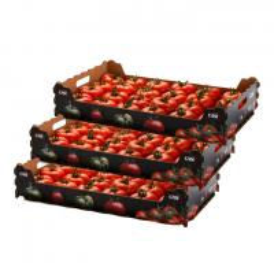 China Biodegradable Fruit Box Carton Box  Fruit  Vegetable Apple Box Packaging on sale