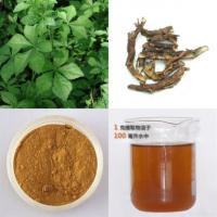 Wholesale Siberian Ginseng Extract from china suppliers