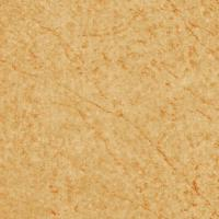 Wholesale 300x300 Floor Ceramic Tile (FX303003) from china suppliers